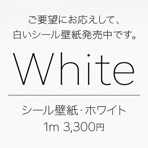無地ホワイト壁紙